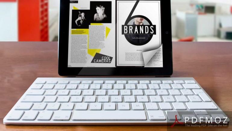 Interactive PDF